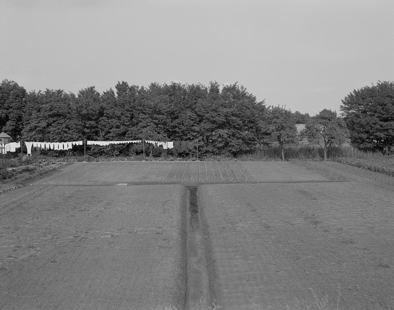 38KF945-670-317.jpg