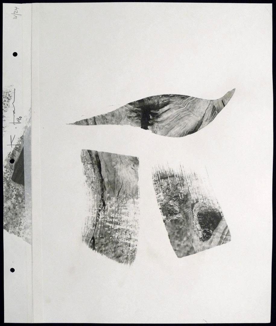 KF969-26.jpg